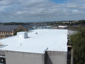 single ply membrane white roof