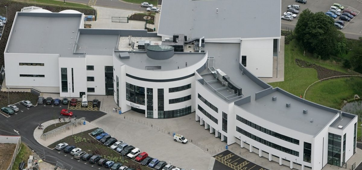 tpe membrane roof