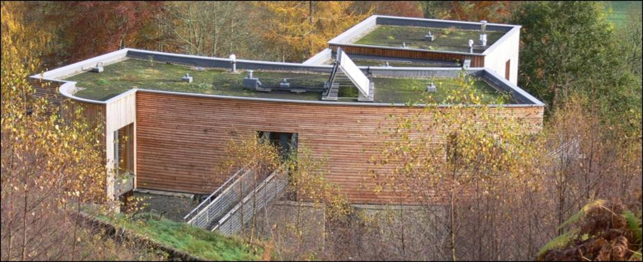 suds in green roofs